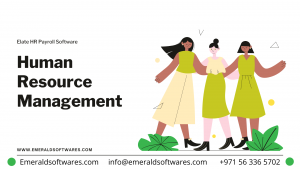 HRMS for Internal Training – HRMS UAE